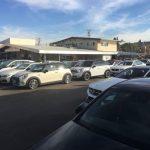 加州二手車熱銷 新車衰退