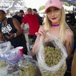 加州大麻店 逾七成無照營業 將近三千家