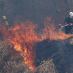 放火禁令效果不彰 巴西亞馬遜雨林火災續增多