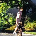 聖荷西街頭飆車2死 3肇事男逃逸