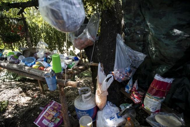 掃蕩人員在森林非法種植大麻農場,看到的紊亂景象,垃圾、有毒化學物質等。(洛杉磯時報)