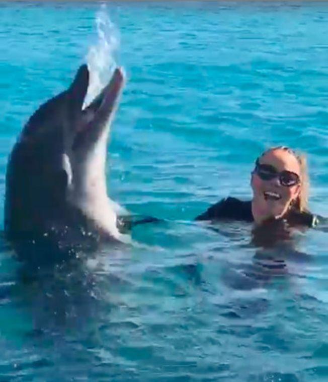 瑪麗亞凱莉飆海豚音,真海豚嚇到逃跑。(翻攝自Instagram)