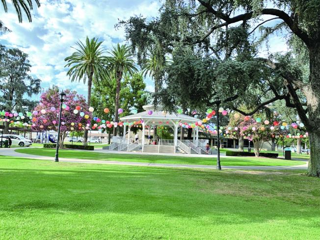 饕中秋周六登場,天普市公園已高高掛起數百個燈籠,五彩繽紛,非常耀眼。(本報記者╱攝影)