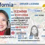 非男非女 伊州駕照將增X選項
