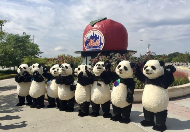 「Hello Panda Festival」發布會上,人偶大熊貓的出現引人注目。(記者朱蕾/攝影)