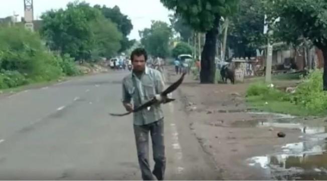 三年來,每當柯瓦外出時,都會帶著棍子以驅趕烏鴉。(視頻截圖)