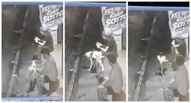 一名菲律賓青年玩手機太入迷,整個身體動也不動,被兩隻狗當電線桿輪流小便,整個滑稽的場景全被附近民宅監視器拍了下來。(路透/Newsflare)