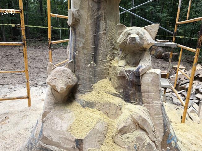 皮德爾森用鏈鋸將被雷劈的百歲大樹雕刻成動物齊聚的藝術作品。(取自WTOP網站)