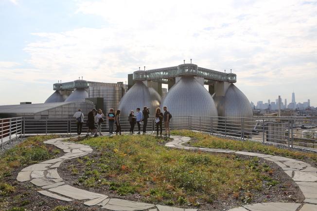 「紐約建築開放周」將於10月18日至20日登場,圖為Newtown Creek Wildflower Roof。(Yi-Ching Lin攝影)