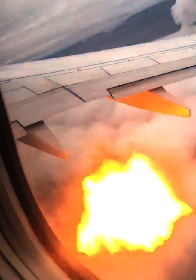 Swoop航空10日班機遇鳥襲,一隻雁被吸入引擎中導致飛機引擎起火。(取材自推特)