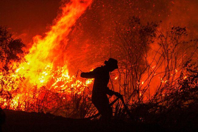 印尼南蘇門答臘省實施火耕,大火蔓延,消防隊員忙滅火。(Getty Images)