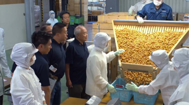 許氏參業創辦人許忠政先生及總裁許恩偉參觀日本北海道干貝工廠。