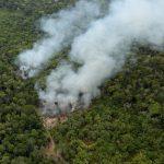 祭1億美元保育基金 美國、巴西致力保護亞馬遜
