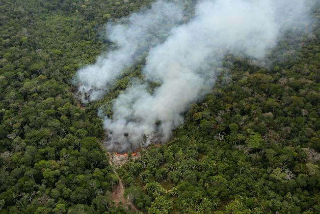 亞馬遜雨林火災頻仍,外界指責巴西政府放任縱火開墾土地,導致火災。(路透)
