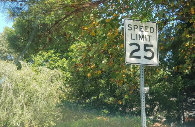 亞特蘭大市議會運輸委員會要求該市計劃部門進行研究,調查目前交通速限對於市民是否安全。(記者林昱瑄/攝影)