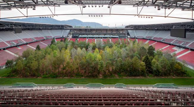 氣候變遷,大自然反撲,極端氣候席捲全球各地。為了要提升大眾對氣候變遷等環保議題的關注,瑞士一名藝術家把森林搬到體育場內,希望藉此警惕如果人類再不為環保有所作為,有一天將「只能在博物館內看樹」。(取材自Colossal/Gerhard Maurer)
