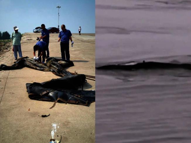 在網上傳得沸沸揚揚的「三峽水怪」被成功捕獲,其實是廢棄橡皮氣囊。(新浪微博照片)