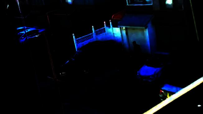 鄰居提供的視頻顯示林大河涉嫌在住宅後院殺死兒媳,被警方當場控制。(本報檔案照)