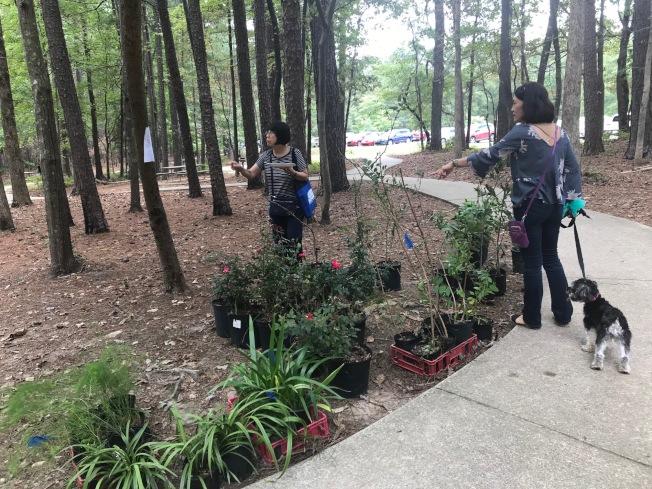 活動參加者購買植物,義賣所得將作為同鄉會活動經費。(記者王明心/攝影)