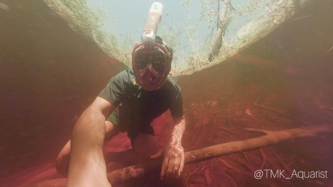 深紅色的水域。(Mark Chen提供)