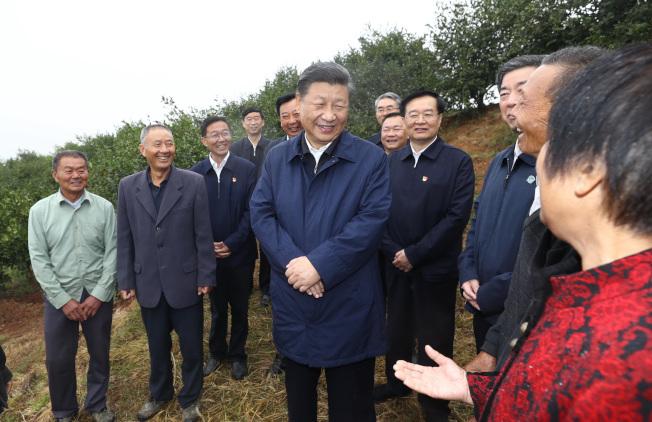 習近平頻繁走訪「紅色基地」,慰問老區群眾,這是他在河南光山縣司馬光油茶園與農民交流。(新華社)