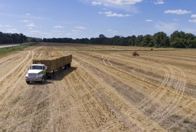 中方原安排要到美國農業產州考察,但半途取消,令美中貿談出現變數。(歐新社資料照片)