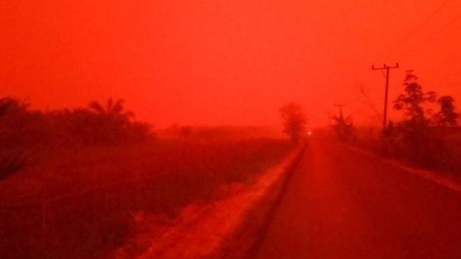 印尼近來森林大火造成嚴重霾害,蘇門答臘島占碑省驚見血紅色天空。(取自網路)