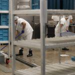 被關押移民工作應拿最低時薪 聯邦法官擬撤回裁決