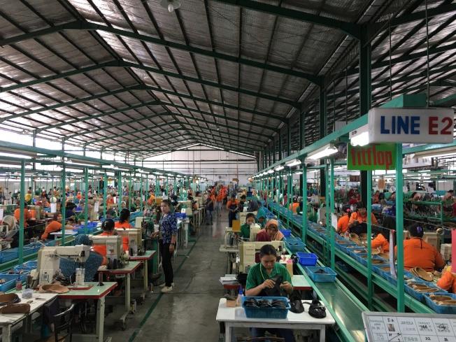 因應美中貿易戰,美國客戶要求轉單,興昂國際看中印尼豐沛勞動力,積極擴大印尼泗水廠產能,明年可量產達600萬雙鞋。圖為興昂國際在印尼廠,勞工從事車縫等工作。記者江睿智/攝影