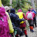 登山怕加速膝蓋退化?避開這些錯誤姿勢即可