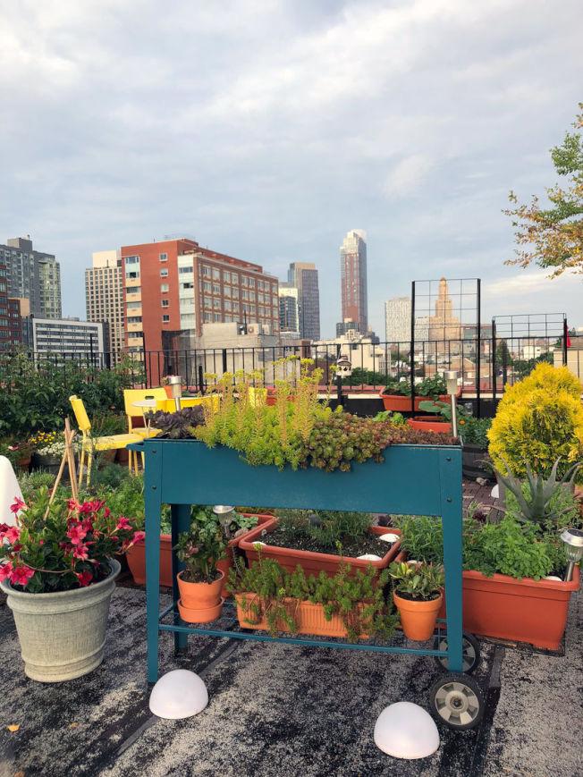 平時種植一些花卉或小型蔬菜在花架上,在後院聚會時,可以將花架作為裝飾拜訪在用餐區或休息區附近,一舉兩得。(圖片取自電商網站gardeners.com)