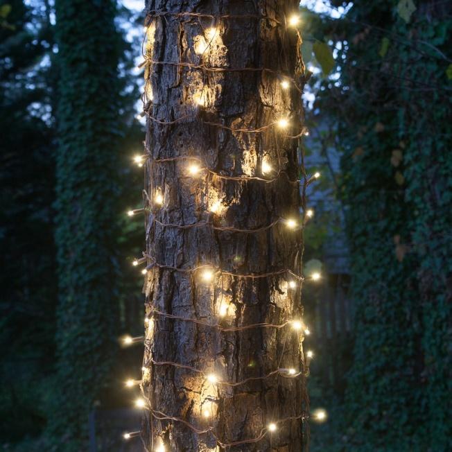 小的串燈可以纏繞在樹幹上。(電商網站https://www.christmaslightsetc.com)