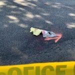 蒙市老婦過街摔倒流血 警封街調查