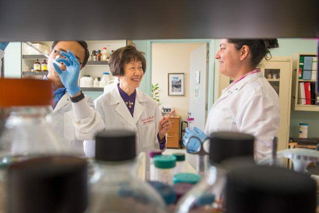 南加大教授李邵素明(中)在實驗室工作。(Chris Shinn攝影,USC提供)