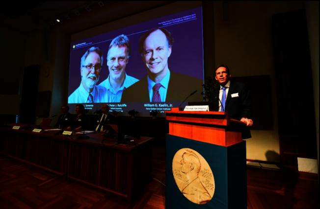 2019年諾貝爾獎今天揭開序幕,醫學獎得主由凱林(William Kaelin)、拉特克里夫(Peter Ratcliffe)和塞門薩(Gregg Semenza)獲得殊榮。圖╱GettyImages