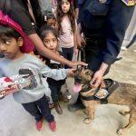 橙縣消防局開放日 小朋友興奮與搜救犬互動