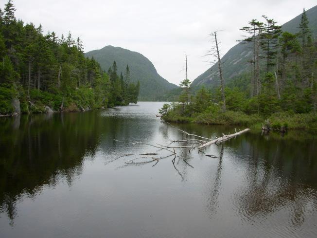 調查人員在面積廣達38英畝的科登湖裡,發現已絕跡32年的小河鱒。(美聯社)