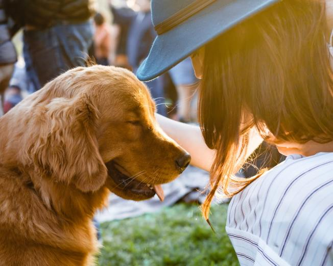 根據研究,養狗與長壽有正相關,特別是曾心臟病發作或中風的人。(Photo by Adam Griffith on Unsplash)