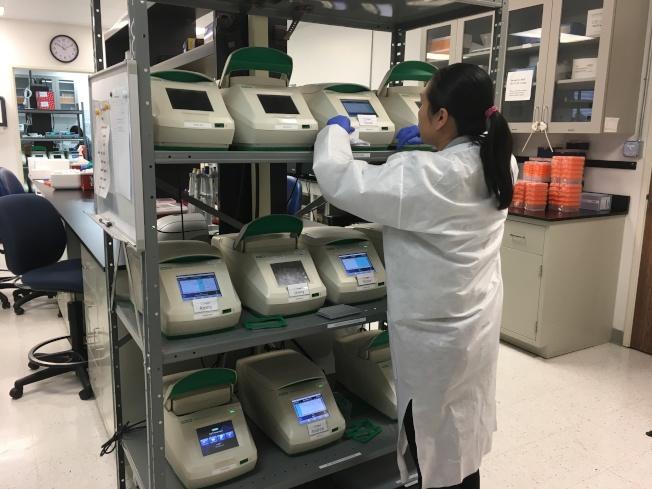 基因檢測亂象叢生,衛生福利部決定納管,圖為基因檢測實驗室。(圖:張敏毅提供)