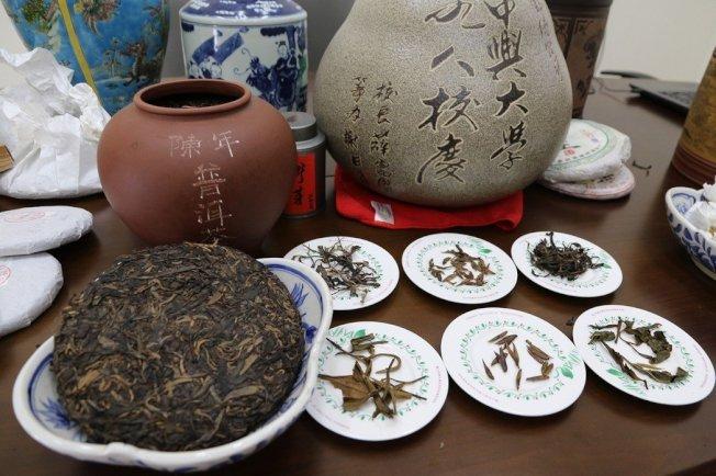 普洱茶保存不當可能產生不當的黴菌毒素,造成肝臟代謝負擔。圖/本報資料照