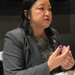 伊州眾議員馬靜儀尋求連任 盼華裔支持