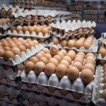 蛋價爆跌30% 買1打只要92美分