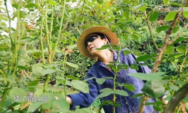 鄧婕在豪宅中的花園裡工作。(視頻截圖)
