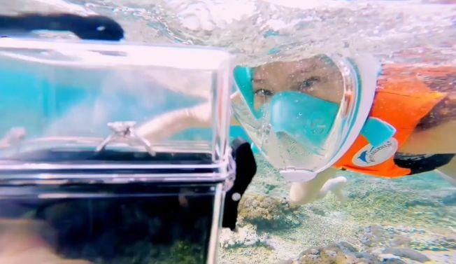魏晨在水中拿著鑽戒向女友求婚。(視頻截圖)