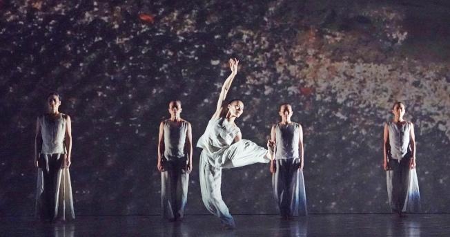 林懷民的舞蹈作品《秋水》。(記者杜建重/攝影)