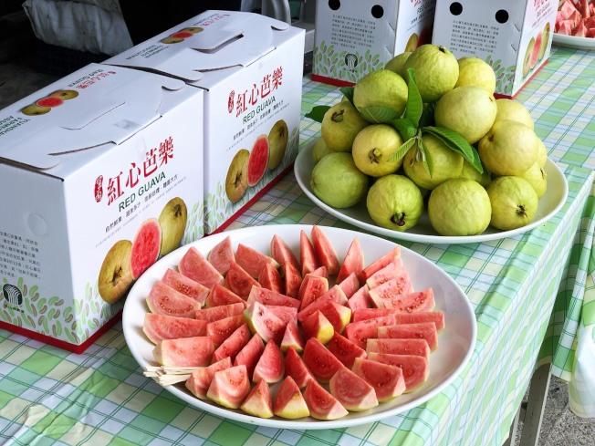芭樂是抗氧化力最強的水果。圖/宜蘭縣員山鄉農會提供