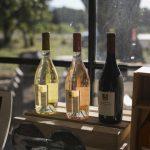 會變貴嗎? 歐洲紅酒起司18日起增加關稅 衝擊消費季