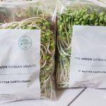 Weee有機翡翠豆芽 水養殖無污染