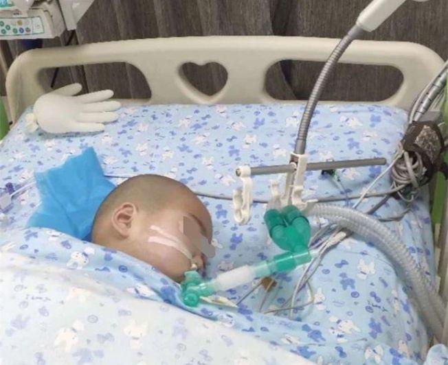受害兒童目前仍在昏迷。(取材自新京報)