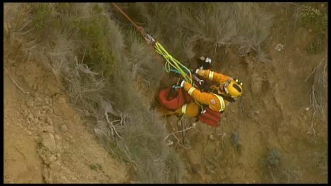 救援人員花3小時拯救澳洲一隻不小心被困的邊境牧羊犬「吉米」。(路透社)